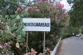 Montagnareale2-800x524
