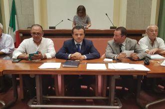 De Luca riunione assemblea ATI Messina