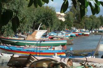 barche di Vaccarella