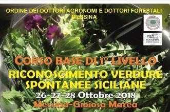 Locandina_corso2