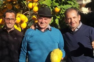 Luca Garofalo, Carmelo Scilipoti, Michele Isgrò
