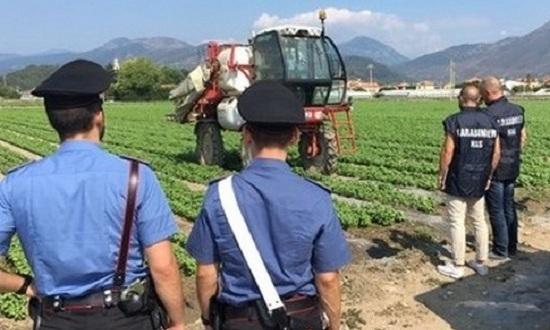 Repertorio controlli-carabinieri-lavoro-campi