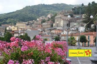 Sinagra citta fiorita