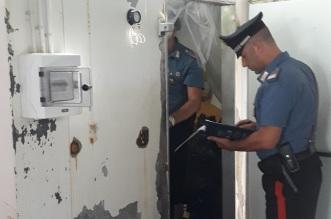 CC Ispezione cella frigo