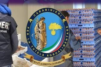 tutela ambientale carabinieri